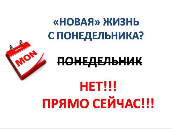 novaya_zizn